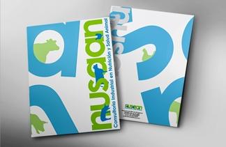 Nusaan Brand Identity